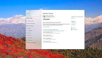 Windows 10 October 2020 Update (20H2)